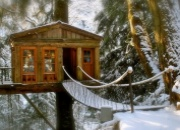 Treehouse Inns, Bed and Breakfasts and hotels