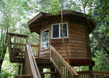 Treesort Treehouse Living