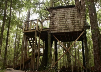 Hostel in the Forrest Treehouse