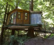 redwoodtreehouse180.jpg (180�150)