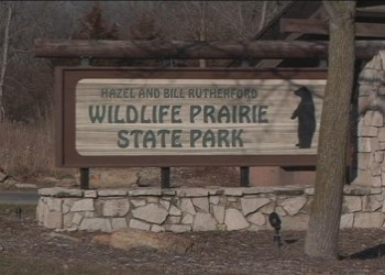 Wildlife Prairie State Park in Hanna City, Illinois