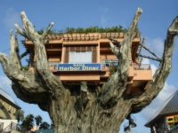 Naha Harbor Diner treehouse