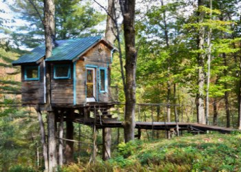 The Tiny Fern Forest Treehouse in Lincoln, Vermont