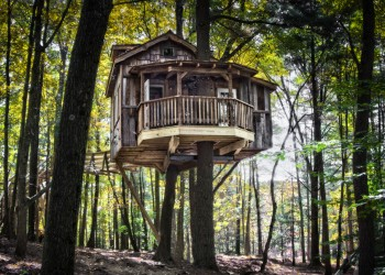 Mohicans Old Pine Tree House