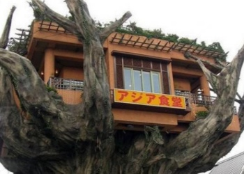 The Naha Harbor Diner in a concrete tree
