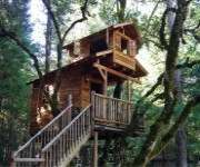 treehouseOut.jpg (180�150)