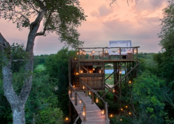 Tinyeleti Treehouse in Lion Sands Game Reserve