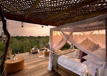 The View of the Kingston Treehouse in Lion Sands Game Reserve