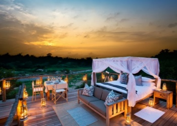 The View of the Tinyeleti Treehouse in Lion Sands Game Reserve