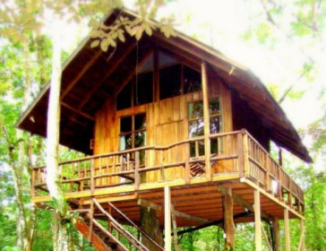 Tree Houses Hotel Costa Rica in the Rain Forrest of Costa Rica