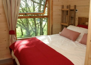 Into the Woods Treehouse Bedroom