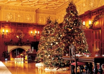Biltmore Christmas Trees