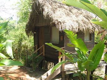Treehouses in Belize