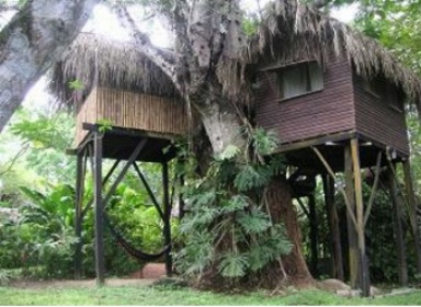Parrot Nest Lodge and Treehouses in Belize