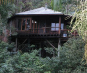Secrets on the Lake Treehouses