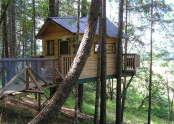 Treehouse Vertical Horizons