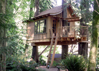 Upper Pond Treehouse
