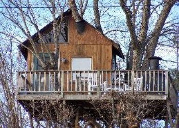 TreehouseVineyards.JPG (350×250)