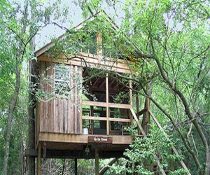 Carolina Heritage Treehouses